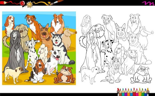 Kolorowanka psów rasowych