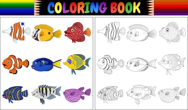 Kolorowanka różnych ryb