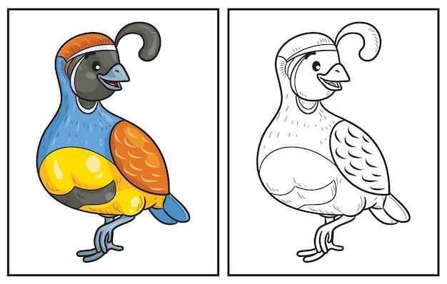 Kolorowanka śliczna przepiórka kolorowanka i kolorowa postać clipart ilustracja kreskówka wektor