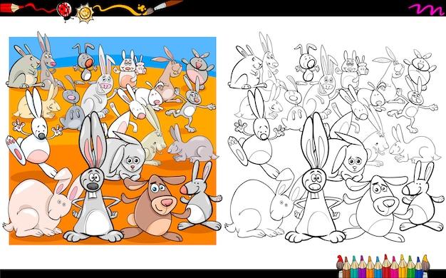 Kolorowanki królików