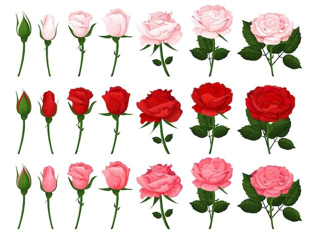 Kolorowe elementy do ilustracji, kart okolicznościowych, zaproszeń ślubnych i szczęśliwych walentynek.