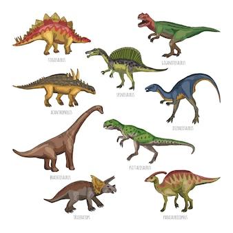 Kolorowe ilustracje różnych typów dinozaurów. tyranozaur, rex i stegosaurus