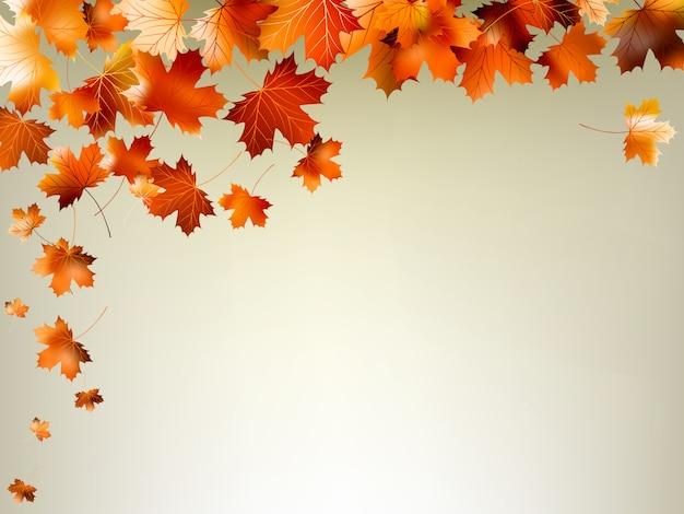 Kolorowe jesienne liście spadają i wirują.