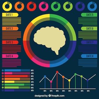 Kolorowe ludzki mózg infografika z wykresami