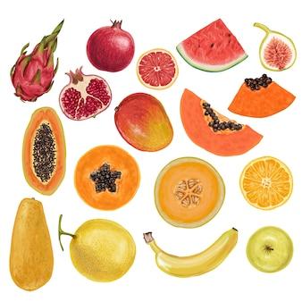 Kolorowe pyszne owoce rysowane ręcznie