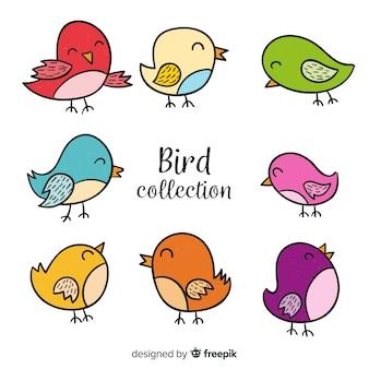 Kolorowe ręcznie rysowane kolekcja ptaków
