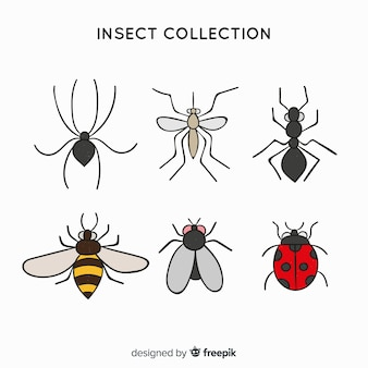 Kolorowe ręcznie rysowane owady paczka