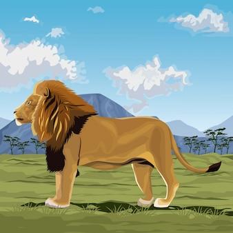 Kolorowe sceny afrykański krajobraz z lwem stojących