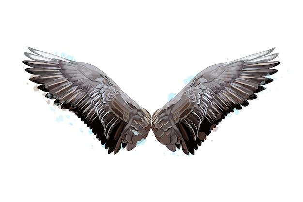 Kolorowe skrzydła z odrobiną akwareli kolorowego rysunku ilustracja wektorowa farb