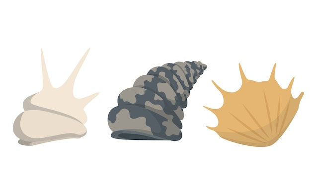 Kolorowe tropikalne muszle podwodne kolekcja ikon.