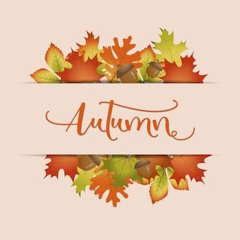 Kolorowy jesień liści tło