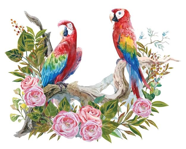 Kolorowy obraz akwarelowy przedstawiający parę papug na zakrzywionych gałęziach z botanicznym stylem retro