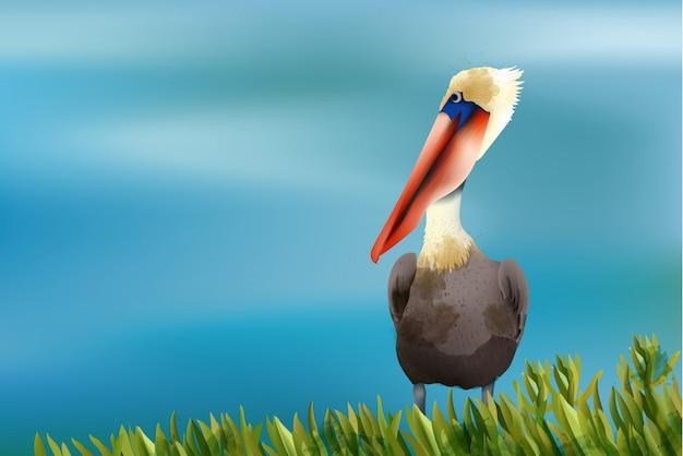 Kolorowy pelikan siedzi w trawie na tle oceanu