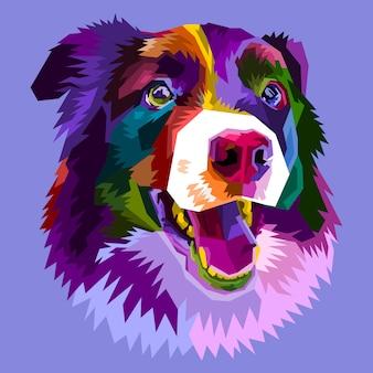 Kolorowy pies rasy border collie na białym tle w stylu pop-art. ilustracja.