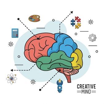 Kolorowy plakat twórczego umysłu z różnymi częściami mózgu