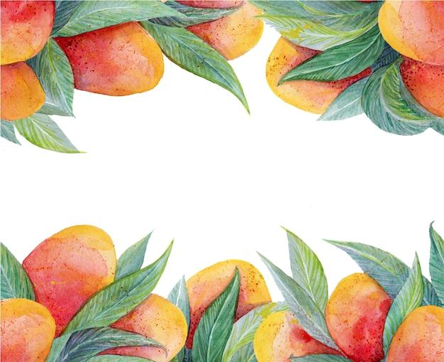 Kolorowy tło z akwarela owoców mango ramki