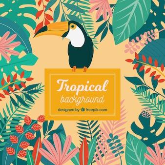 Kolorowy tropikalny liści tło