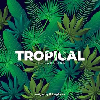 Kolorowy tropikalny tło z realistycznym projektem