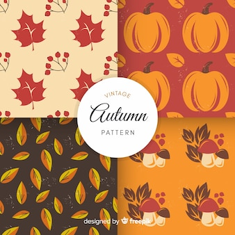 Kolorowy wzór jesień z liści