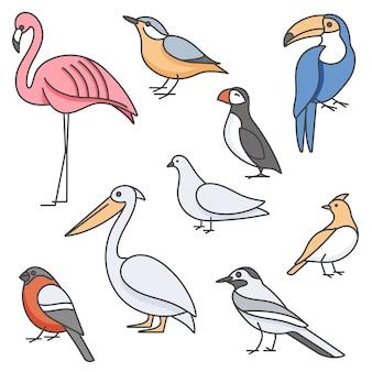 Kolorowy zestaw ilustracji ptaków - gołąb, kowalik, flaming, tukan i inne w modnym stylu liniowym. na białym tle.