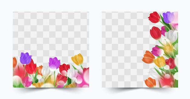 Kolorowy zestaw tulipanów kwiat wiosna zestaw