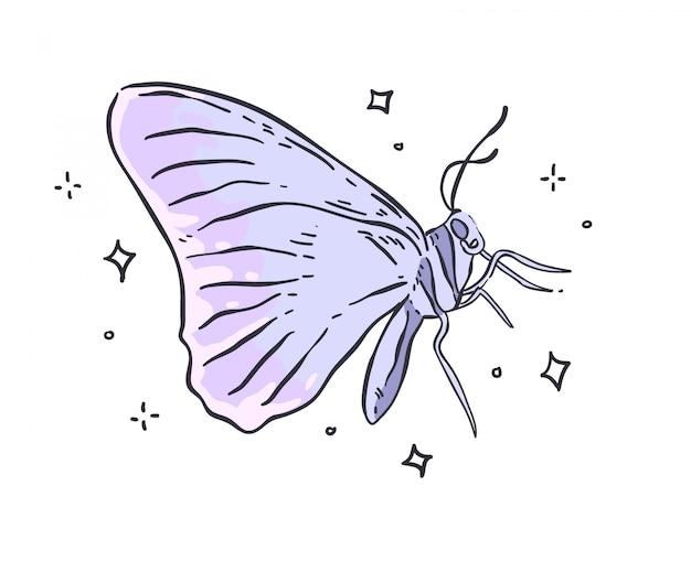 Koloru motyl odizolowywający na białym tle