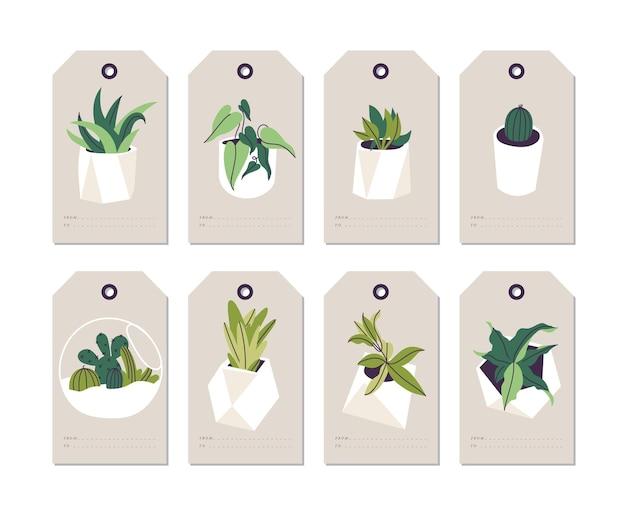Komplet tekturowych metek z cenami roślin domowych w białych doniczkach