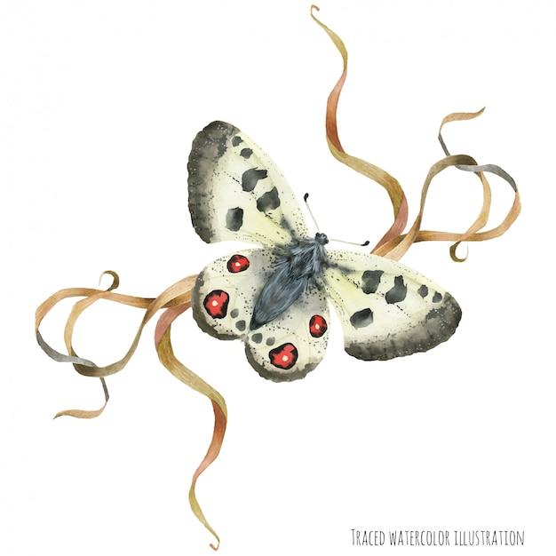 Kompozycja boutonniere z motylami i rośliną