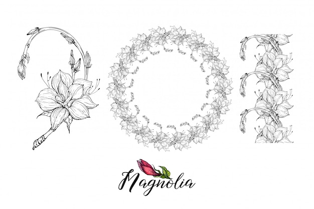 Kompozycja z kwiatami magnolii