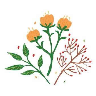 Kompozycja z kwiatów i liści na białym tle. streszczenie szkic botaniczny ręcznie rysowane w stylu doodle ilustracji wektorowych.