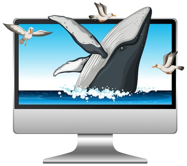 Komputer z wielorybem na ekranie