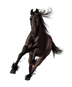 Koń biegnący galopem z wielokolorowych farb splash akwarelowego realistycznego rysunku