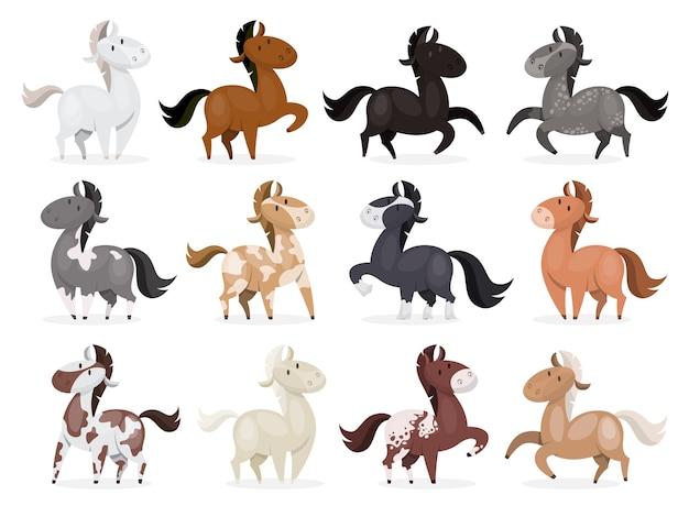 Koń dziki lub zestaw zwierząt domowych. kolekcja