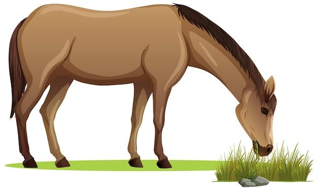 Koń jedzący trawę w stylu kreskówki na białym tle