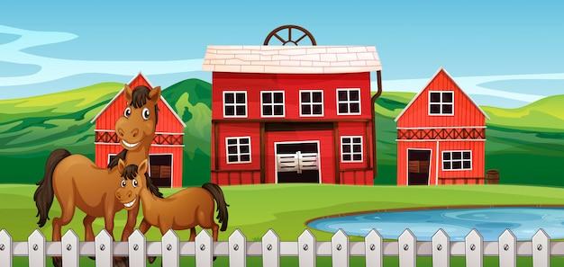 Koń na scenie rolnej