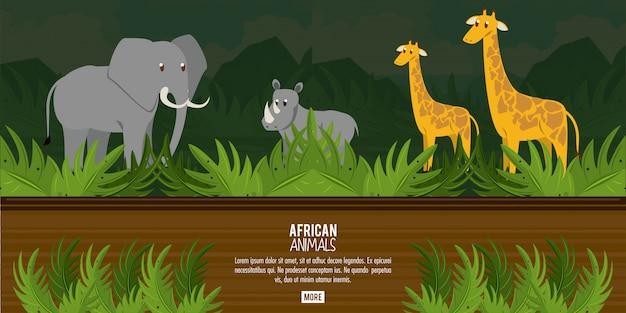 Koncepcja afrykańskich zwierząt