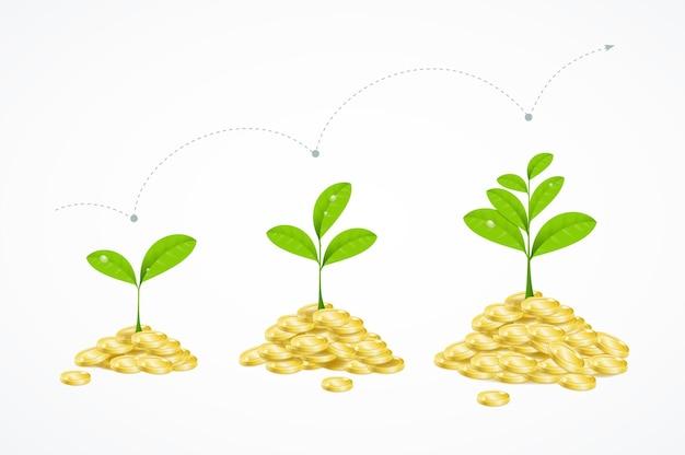 Koncepcja drzewa pieniędzy. wzrost zarobków i zysk.