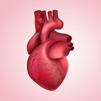 Koncepcja ilustrowana serca