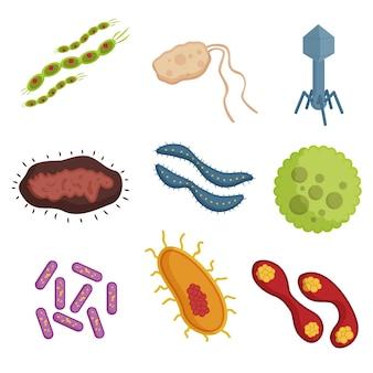 Koncepcja kolekcji wirusów