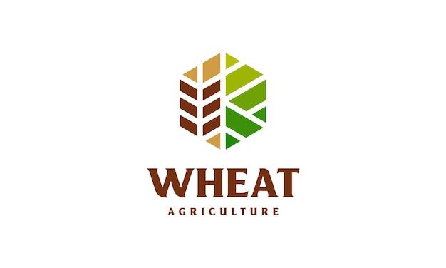 Koncepcja logo luksusowego ziarna pszenicy, ikona logo szablonu logo rolnictwa pszenicy