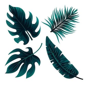 Koncepcja monochromatycznych liści tropikalnych