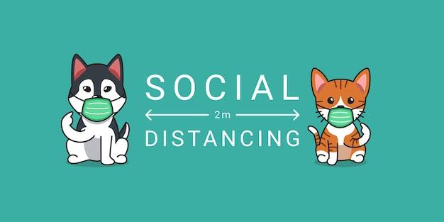 Koncepcja ochrony covid-19 pręgowany kot i pies husky syberyjski noszący ochronną maskę na twarz, dystans społeczny