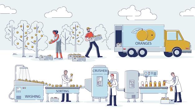 Koncepcja produkcji soków