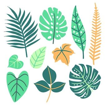 Koncepcja streszczenie tropikalny liści
