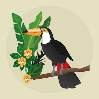 Koncepcja tropikalny ptak. ikona natury