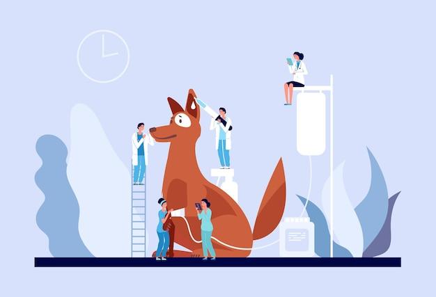 Koncepcja weterynaryjna. klinika weterynaryjna, drobni lekarze opiekujący się szczeniakiem.