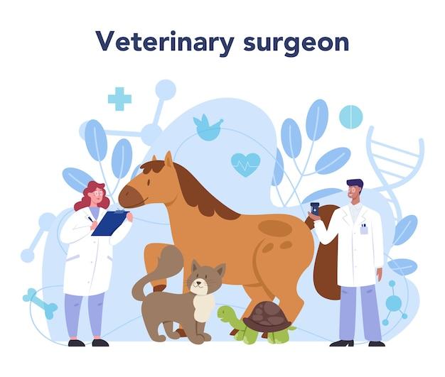 Koncepcja weterynarza dla zwierząt domowych. lekarz weterynarii sprawdzający zwierzę.