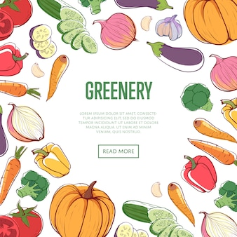Koncepcja zieleni ekologicznej z warzywami