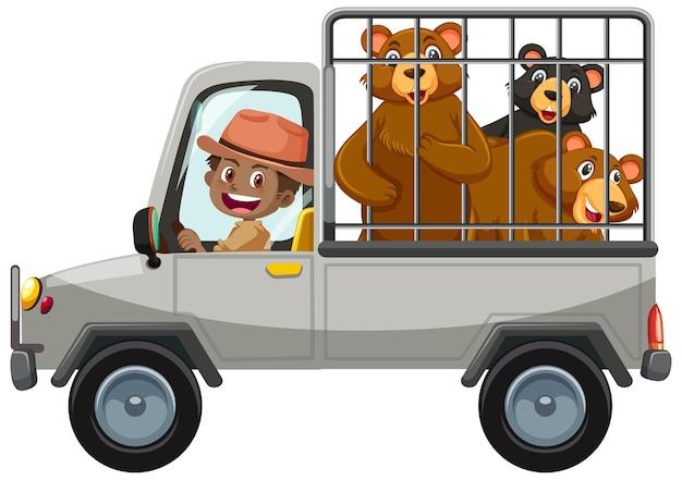 Koncepcja zoo z grupą niedźwiedzi w samochodzie klatkowym na białym tle