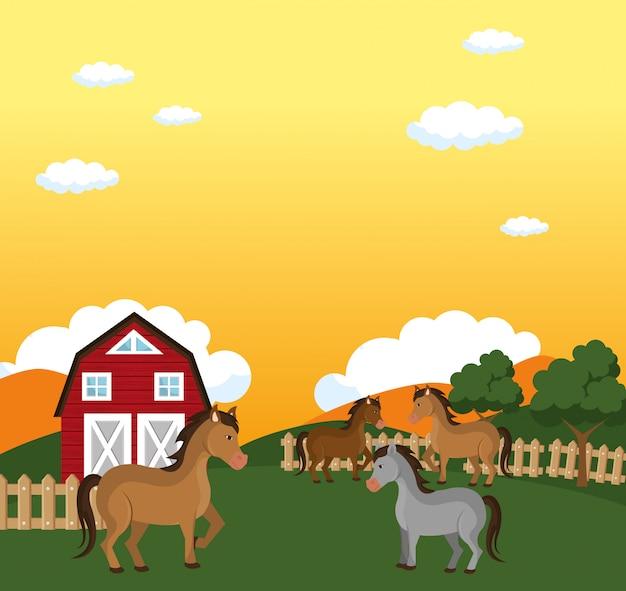 Konie na scenie farmy